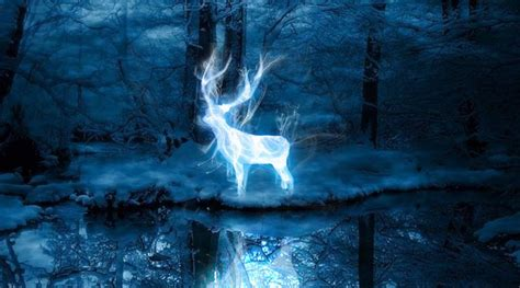 Take Pottermore's new Patronus quiz to find out if you're